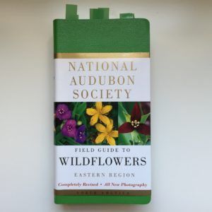 National Audubon Society Field Guide to Wildflowers Eastern Region
