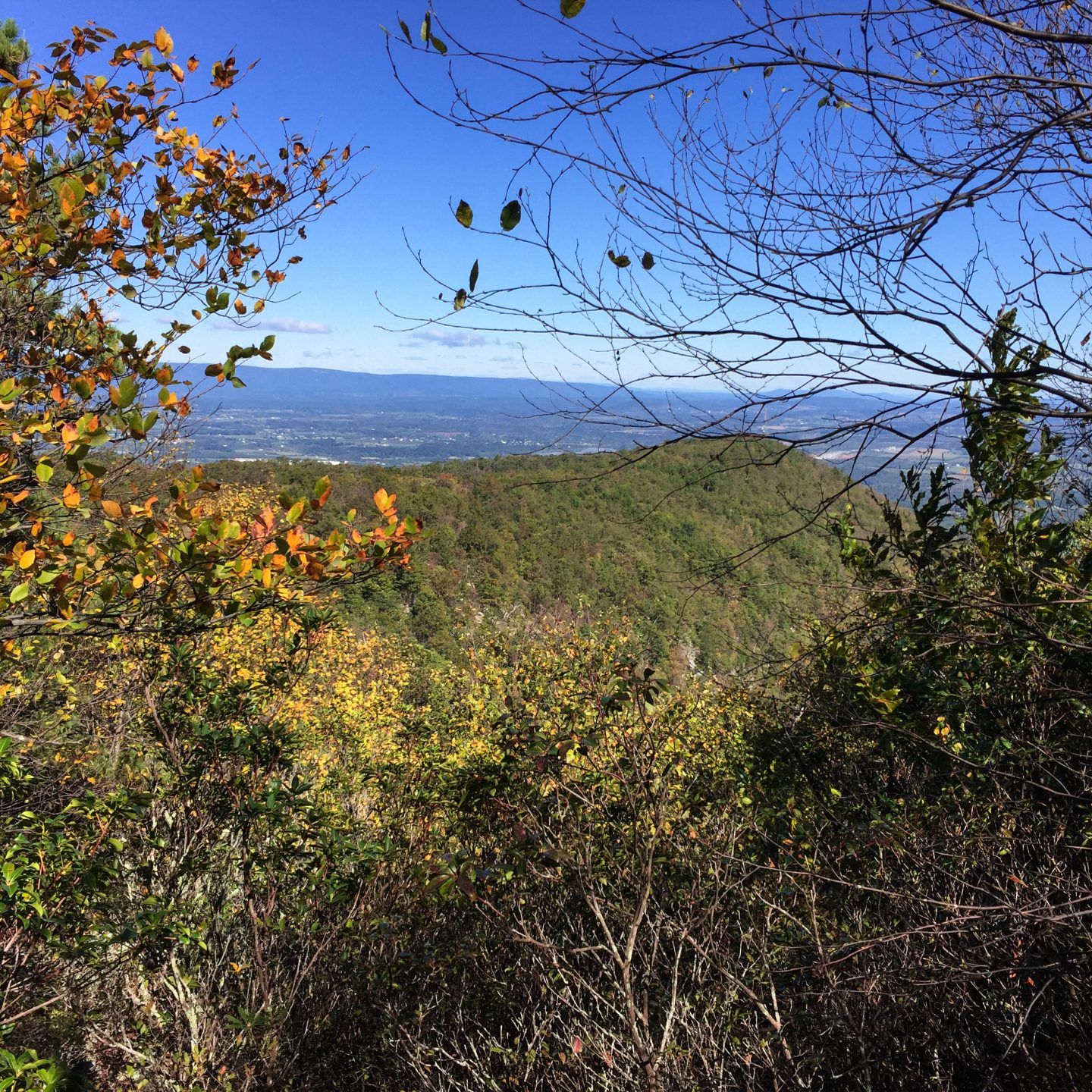 George Washington National Forest – Signal Knob