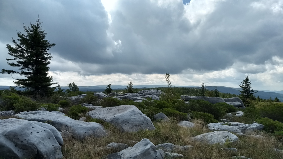 Dolly Sods Wilderness – Dolly Sods North Loop Day 1