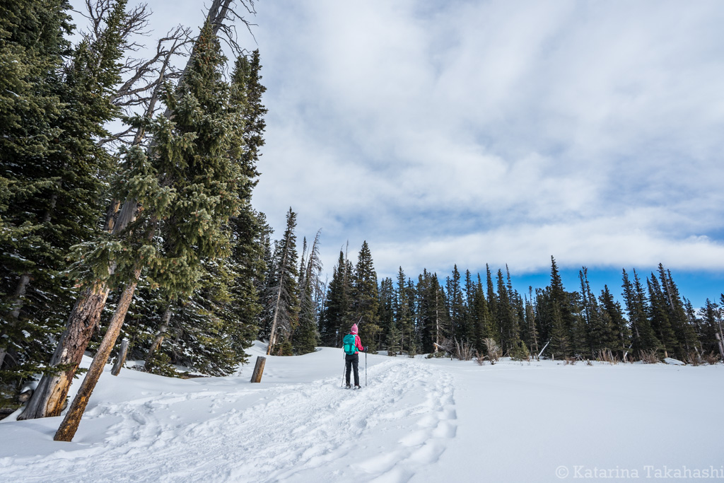 Brainard Lake Showshoe Trail