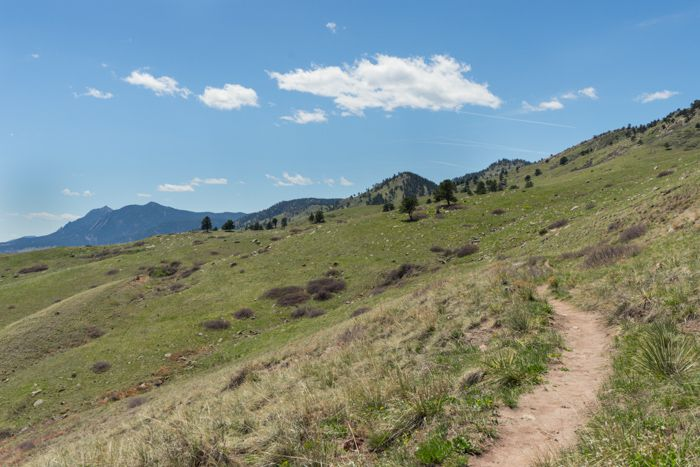 Foothills Bench Trail