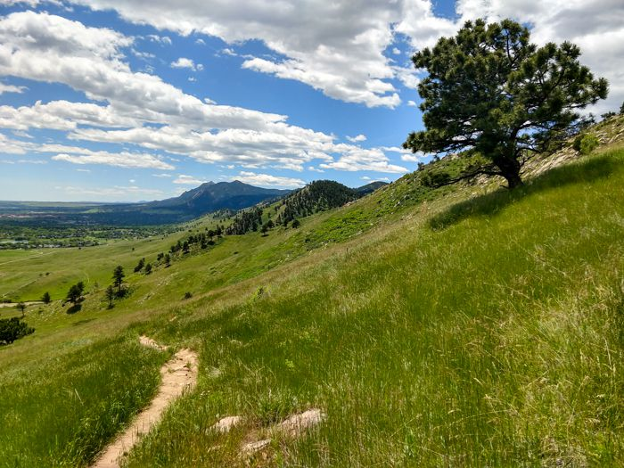 Boulder – Hogback Ridge Loop and Nearby Options