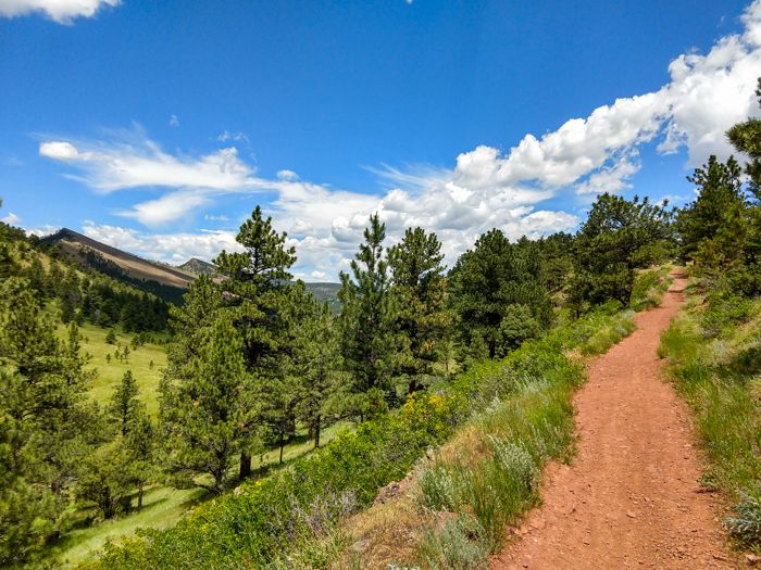 Summer Hike at Joder Ranch