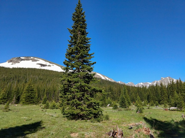 Red Deer Mountain and Indian Peaks Wilderness
