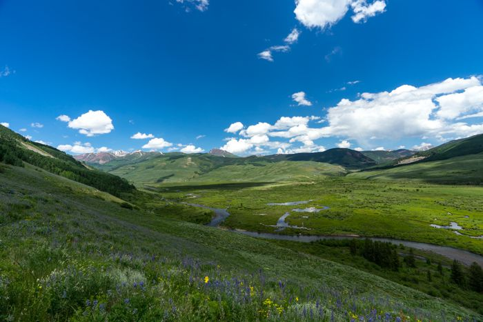Crested Butte Brush Creek Trail