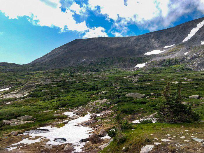 Isabelle Glacier Trail tundra