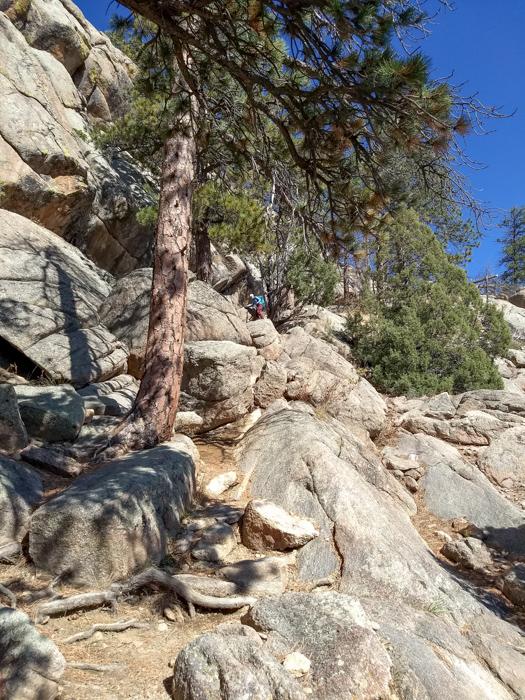 Greyrock Trail Fort Collins