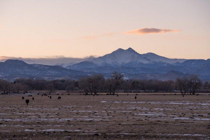 Mt Meeker and Longs Peak from Longmont Colorado