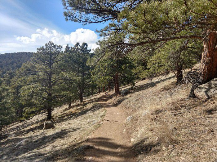 Mt. Sanitas Lion's Lair Trail