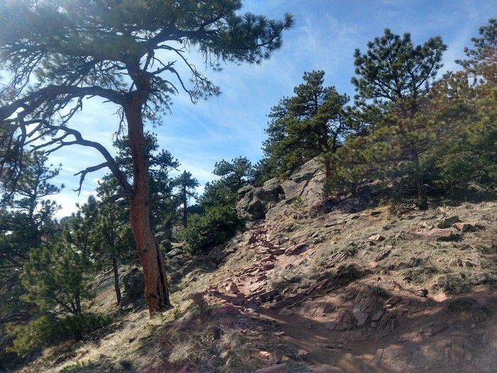 Mt. Sanitas East Ridge Trail