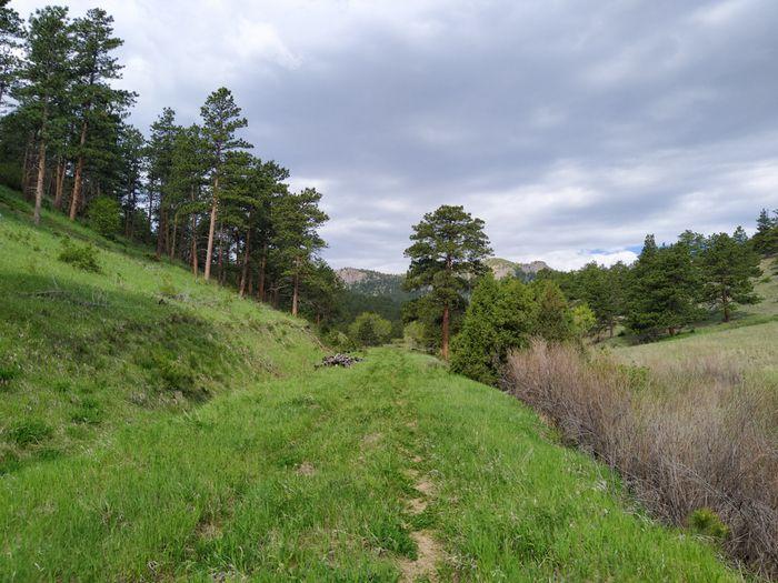 Johnny Park Shortcut Trail