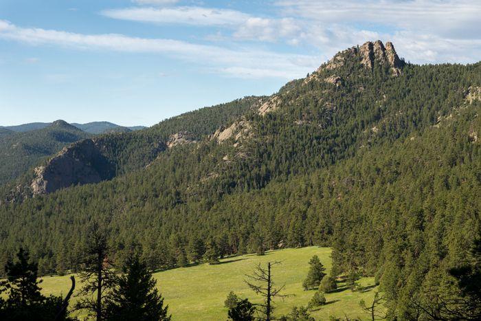 Coulson Gulch Trail North Sheep Mountain