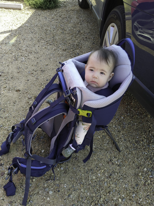 Baby in baby backpack after a hike